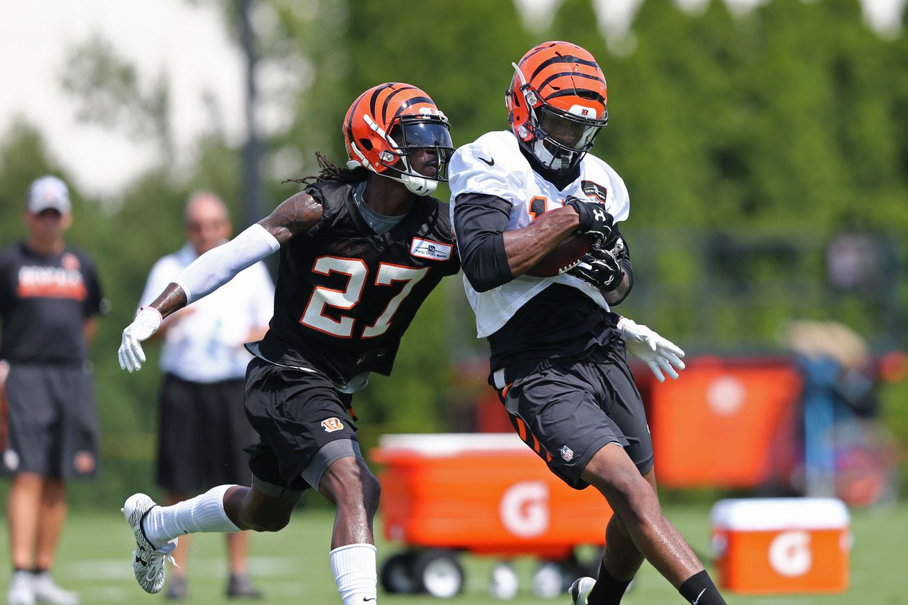 Bengals' Cedric Peerman fractures left forearm, season in jeopardy