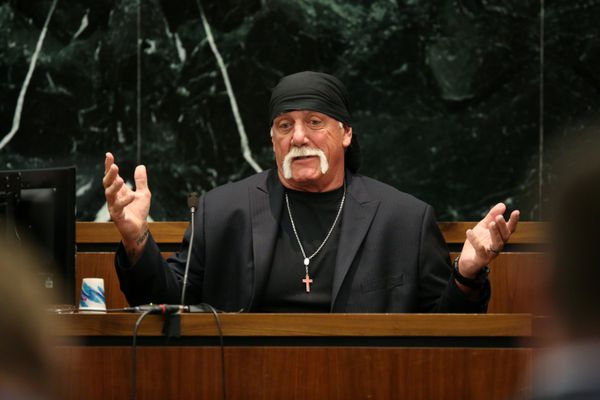 Terry Bollea, not to be confused with Hulk Hogan.