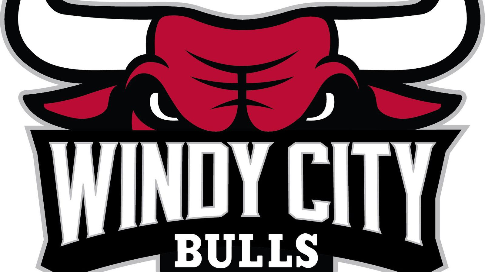 Bulls Release New D League Team Name Logo Blog A Bull