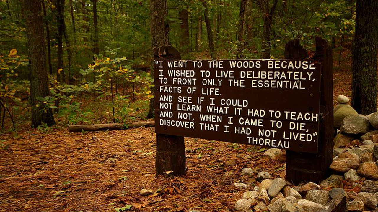 book review walden by thoreau scott berkun 800px thoreaus quote near his cabin site walden pond 0