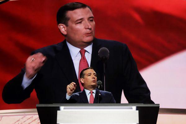 Ted, Tedding.