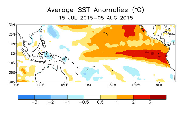 Average sea surface temperature anomalies, July/August 2015