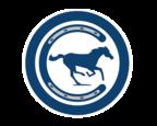 Stampede Blue Logo