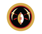 Niners Nation Logo