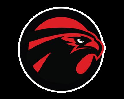 nfl Atlanta Falcons Derrick Shelby WOMEN Jerseys