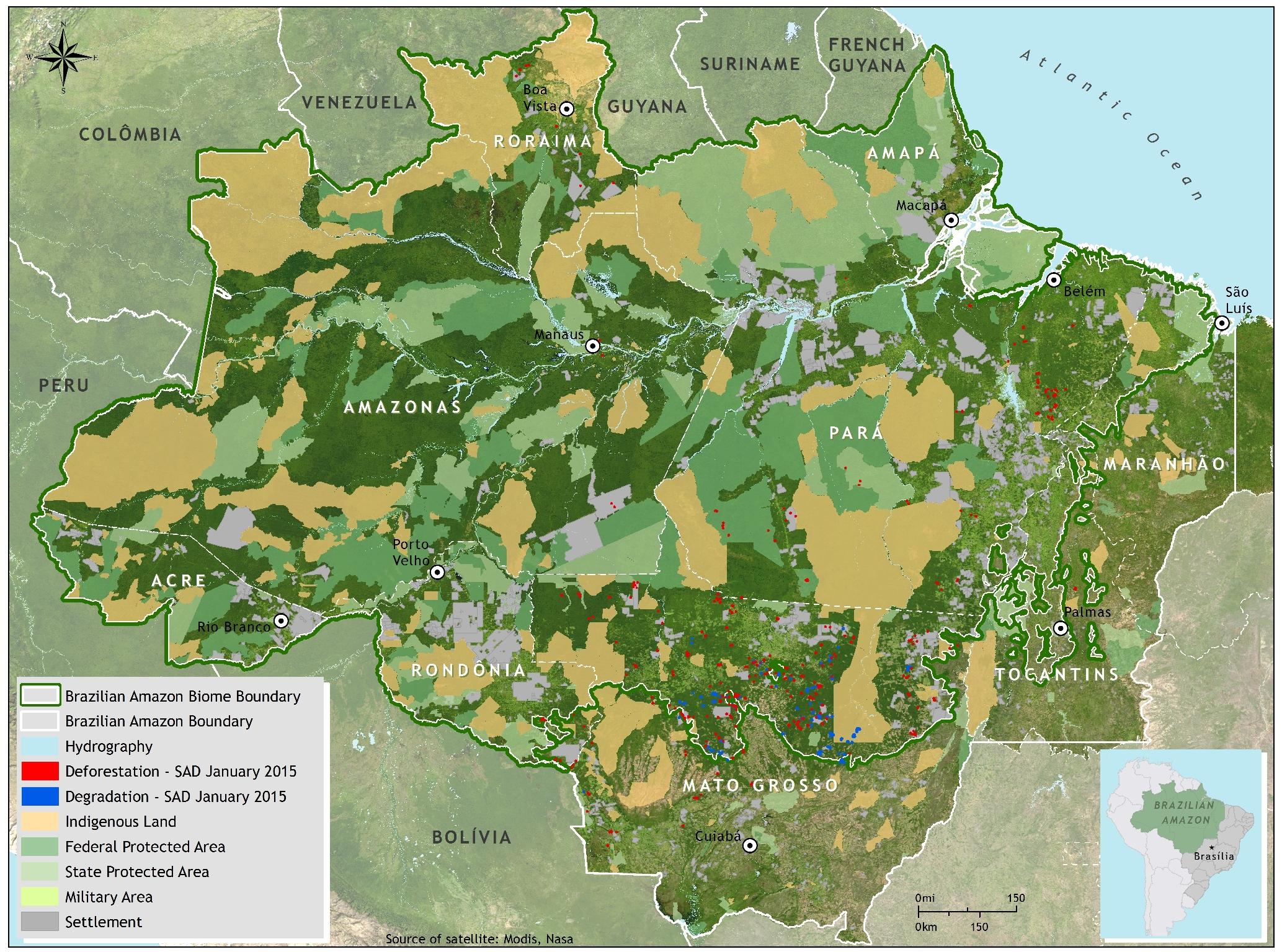a short note on deforestation