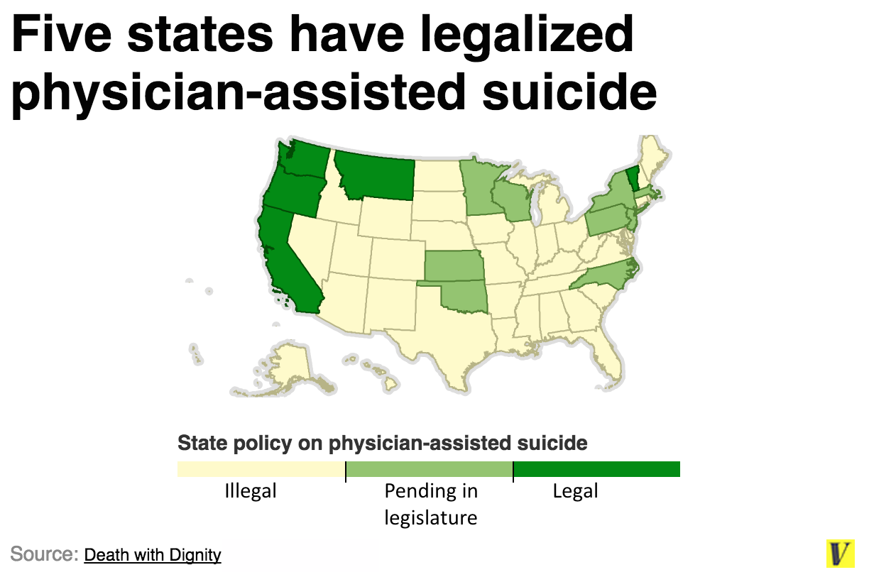 assisted suicide essays