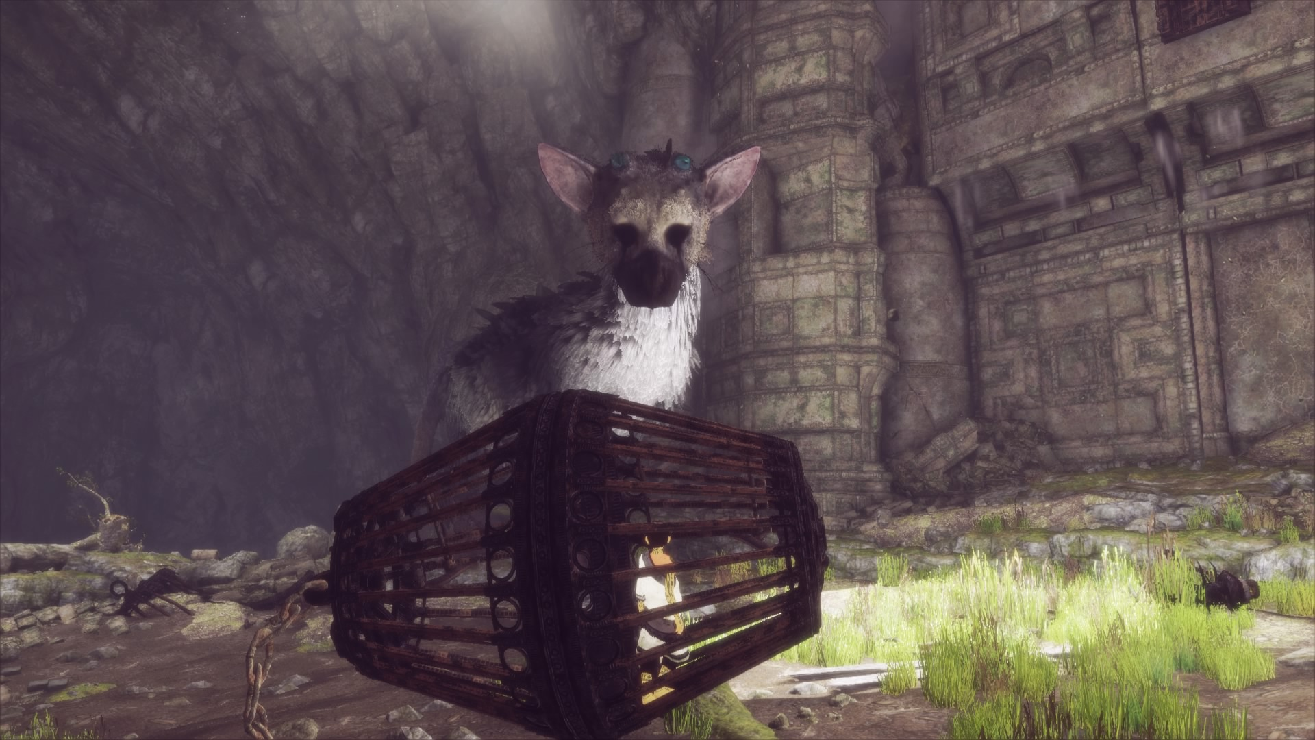 The Last Guardian Walkthrough Part 15 Escaping The