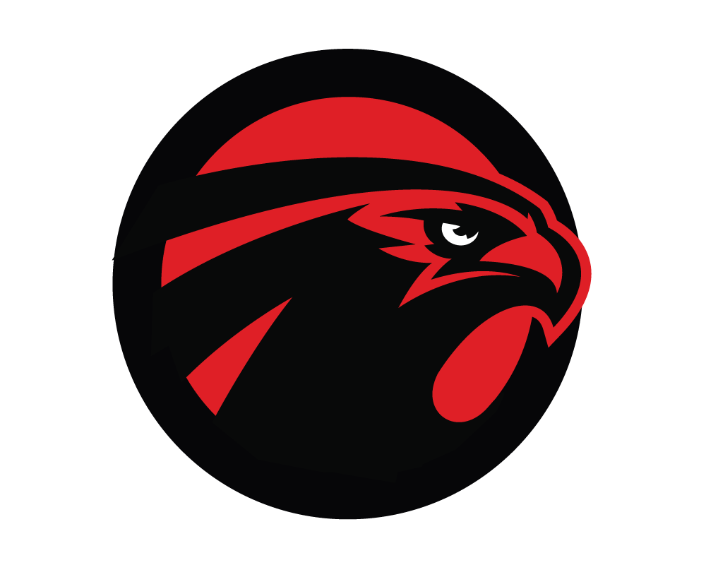Super bowl 2017 preview date and start time falcons blog logo biocorpaavc