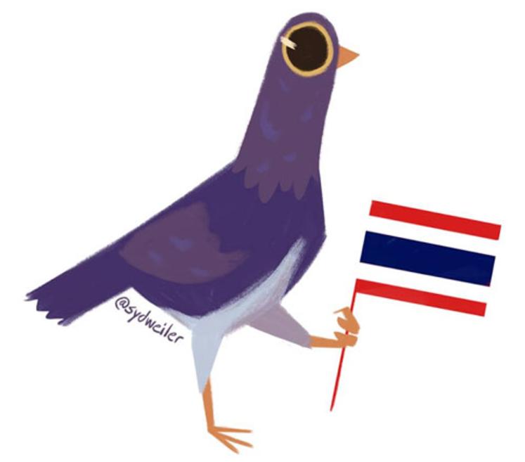 Eurasian Collared-Doves conquistando América - FeederWatch