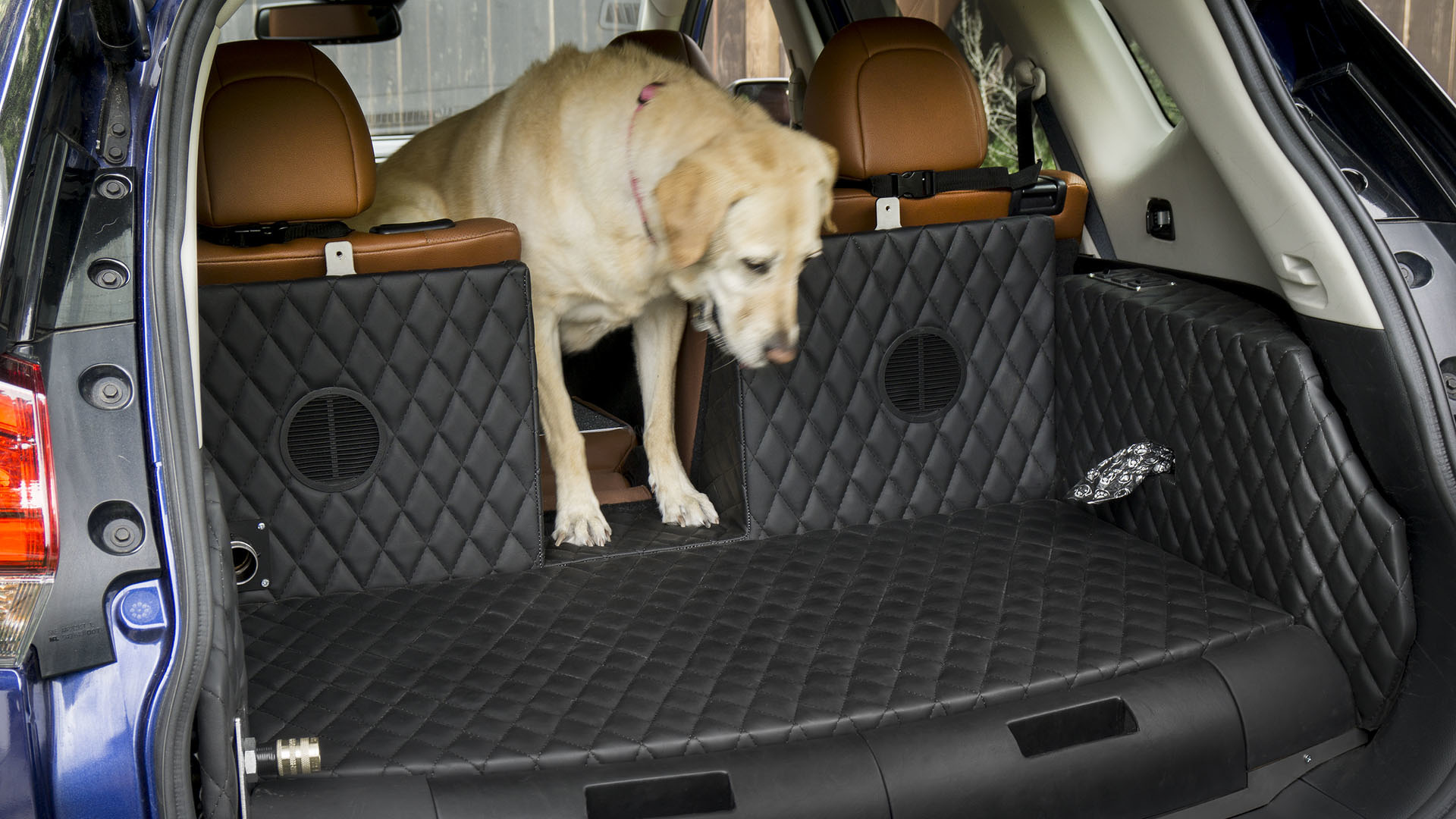 Is Nissan\'s Rogue Dogue a good place to put dogs or a dog prison on ...